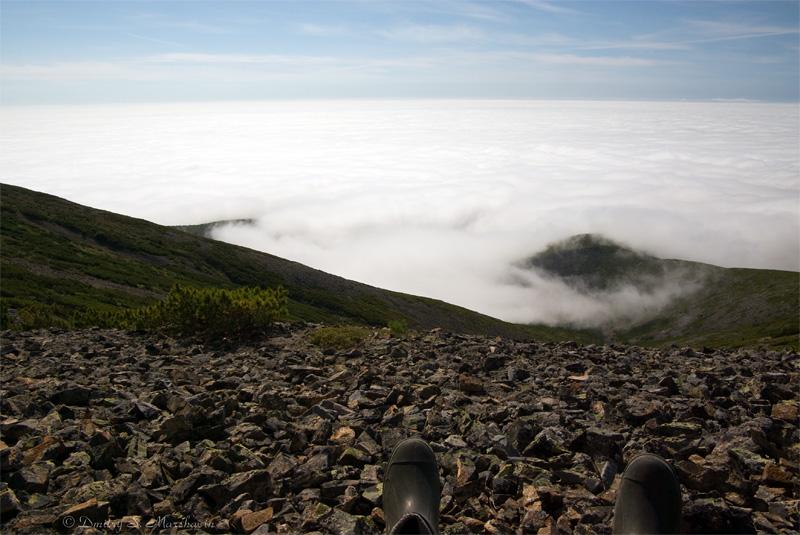 Амахтонский залив опять в тумане...