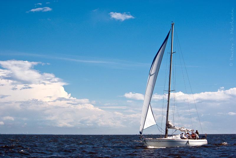 Финский залив, яхтенная регата. Gulf of Finland, yacht regatta.