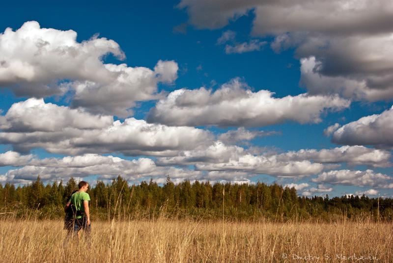 Sitenka village, Luga district, Leningrad region. Деревня Ситенка, Лужский район, Ленинградская область.