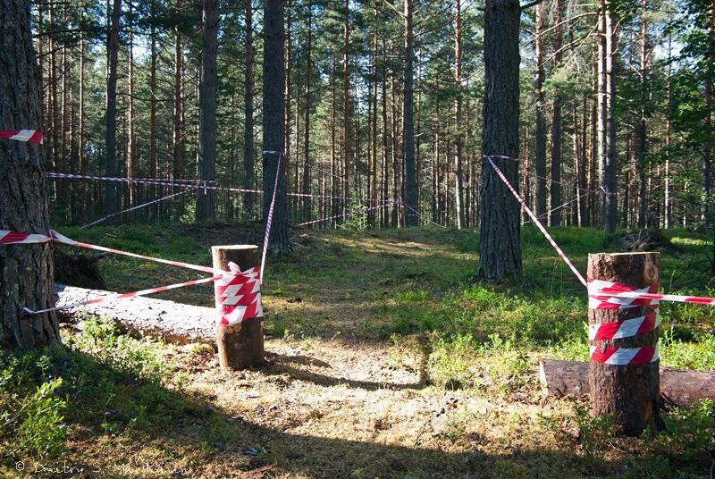 """Велотрасса в детском лагере """"Медведь"""""""