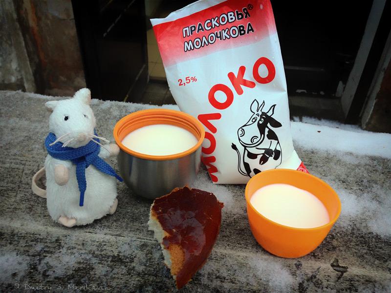 Псков, Мыш, Mouse-traveller, молоко