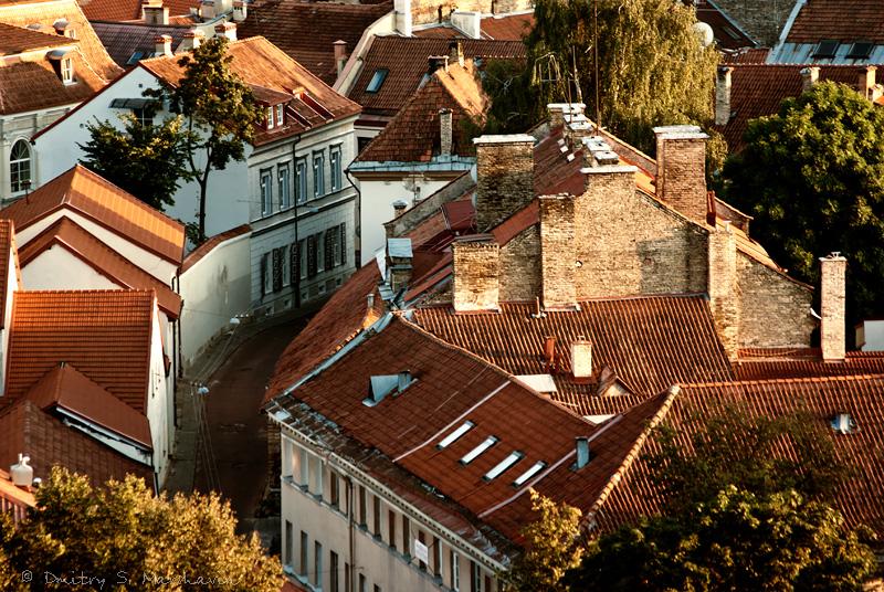Крыши Вильнюса | Roofs of Vilnius